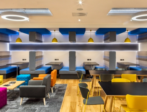 The ultimate place to work? Office becomes first in Ireland to get the gold medal for workspace wellbeing